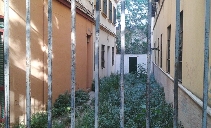 Una verja impide el paso, salvo a particulares, hacia la asilvestrada calle Manuel Sánchez del Campo / Fran Piñero