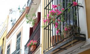 Balcones en la angostura de Castellar / F.P.