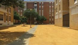Concluido el trabajo con el albero en la barriada de San Carlos