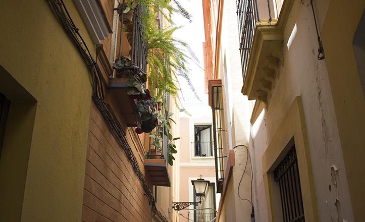 En la calle Lagar se aprecia sensiblemente una menor temperatura que en otras calles del centro / Fran Piñero