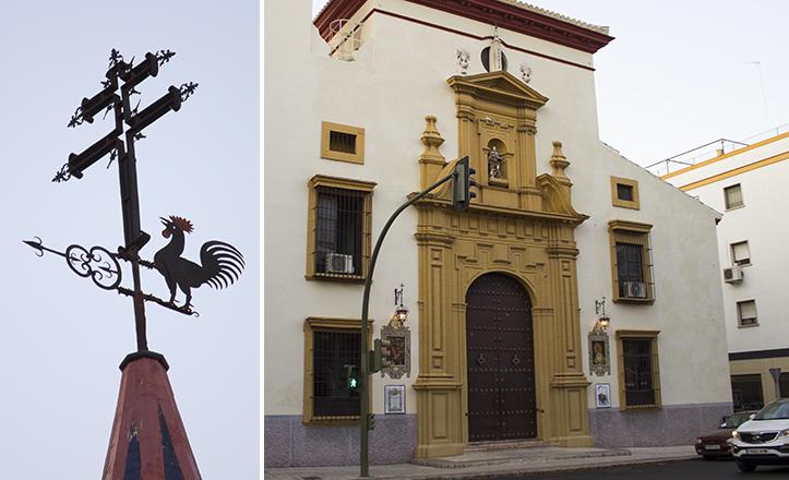 El gallo de San Roque llama la atención por presentar una rojiza cresta y barbillas / Fran Piñero