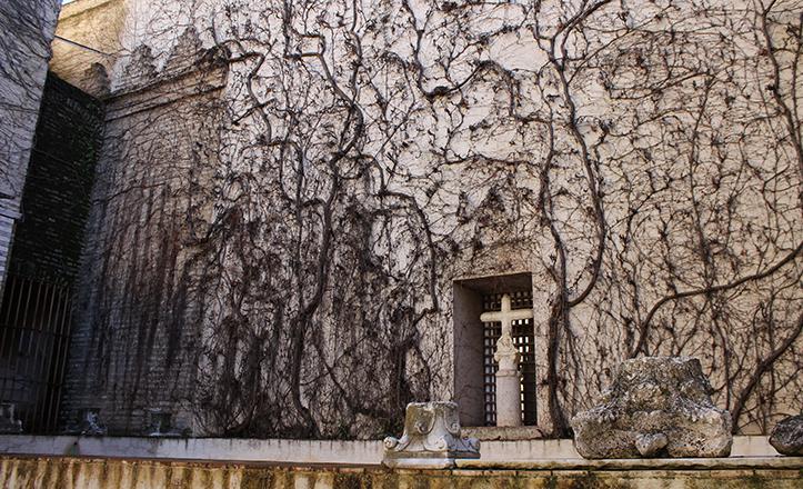 Bajo la enredadera de este patio se encuentra, desde el previo de la Expo 92, la llamada «Cruz de los Ladrones» / Fran Piñero